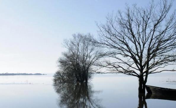 lac-de-grand-lieu-hiver
